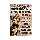 Poster mit Tiermotiv Yorkshire Terrier, Motiv Yorkshire