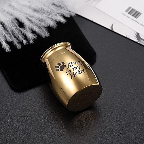 TIANZXS Tarro de cremación para Mascotas de Acero Inoxidable Siempre en mi corazón Pata Grabado Perro Gato Cenizas funerarias urna de Recuerdo 25 mm 16 mm Oro