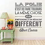 sticker mural French Quote la folie cest de faire toujous Home Décor