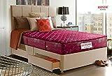 Repose Eyelidz 6 Inch Bonnell Spring Luxury Mattress - Soft Bed,Plush Feel(75x60x6 Inch)