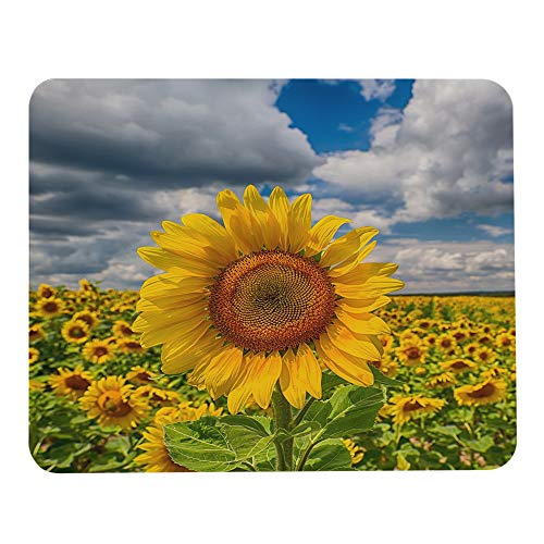 Wozukia Mouse Pad Sunflower in The Field Yellow Blue Sky Gaming Mouse Pad Rubber Large Mousepad Personalized Design Mouse mat for Computer Desk Laptop Office Work 7.9x9.5 Inch