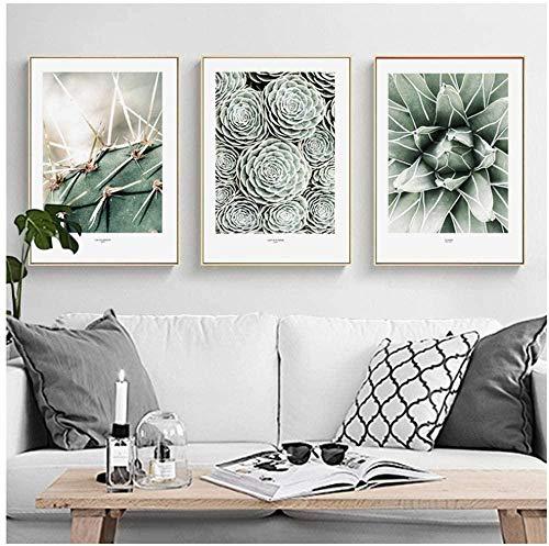 Daapplok Pintura Juego de 3 piezas Lienzo Decoración nórdica Planta verde Hoja Cactus Carteles e impresiones de pared Cuadros de pared para sala de estar Decoración del hogar con marco