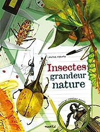 Insectes grandeur nature par Isabella Grott