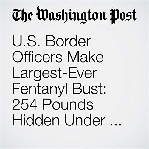 『U.S. Border Officers Make Largest-Ever Fentanyl Bust: 254 Pounds Hidden Under Cucumbers』のカバーアート