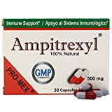 Ampitrexyl, Formula 100% Natural, Dietary Supplement, Help you Support your Immune System, Antioxidant, 30 Capsules, 500 mg, Box (Pack of 24)