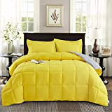 Bedding Down Alternative Comforter - All Season Blanket - Super Soft Fiberfill Duvet Insert - Box Stitched (Yellow, Queen/Full)