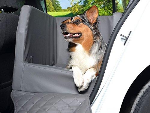 PadsForAll Auto Hundebett, Rücksitz Schutzdecke, Autoschondecke, auch in visco elastisch | Silber