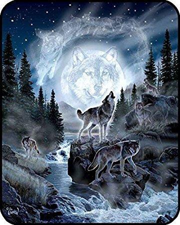 YISUMEI Decke 150x200 cm Kuscheldecken Sanft Flanell Weich Fleecedecke Bettüberwurf Mond Wolf