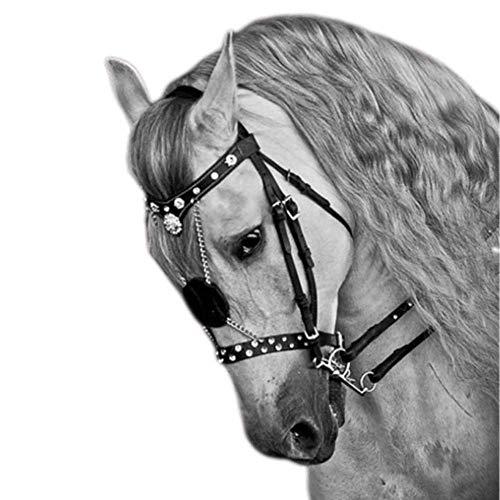 Rhww Equitación Cabestro Cabeza Collar Durable Cuero Metal Brida Correa Ajustable Práctico Equipo Ecuestre Caballos Decoración Equipo