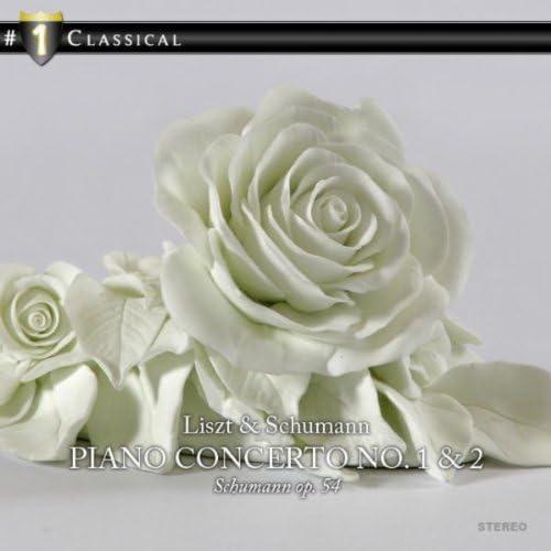 Luxemburg Radio Symphony Orchestra