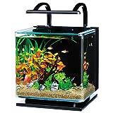テトラ (Tetra) リビングキューブ 12 オールインワン水槽 淡水・海水用 (容量 約12L)