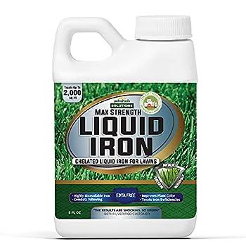 PetraTools Liquid Iron for Lawns - Chelated Iron Liquid Iron for Plants Liquid Lawn Fertilizer Concentrate Solutions Chelated Iron for Plants Lawn Iron Formula EDTA-Free & Made in The USA  8 Oz
