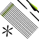 Narchery Pfeile Carbon, 31 Zoll Bogenpfeile für Bogenschießen mit Kunststoffbefiederung, Jagdpfeile für Bogen, Traditionellen Bogen, Recurvebogen und Langbogen, 12er Set