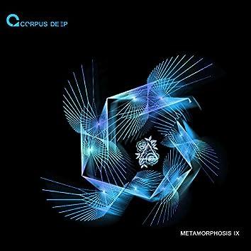 Metamorphosis 9