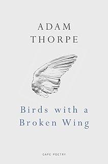 Birds With a Broken Wing
