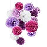 Seidenpapier Pom Pom – Papierblumen – Perfekt für Verschwörung – Geburtstagsfeier – 15 Stück von 8, 10, 35,6 cm