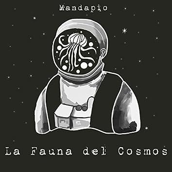 La Fauna Del Cosmos