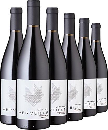 Rindchen's Weinkontor Wein Probierpaket Vin Solaire 6 Flaschen Syrah trocken (6 x 0.75 l)