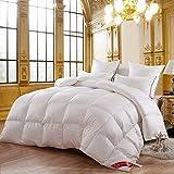 羽毛布団 暖かくて厚いシングル二重航空学生白い冬のキルト 寝具掛け布団 (サイズ さいず : Increased 220*240 cm)