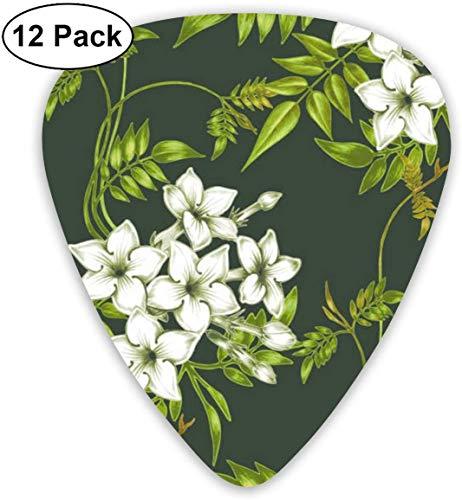 Gitarren-Picks Jasmine Flowers Premium Celluloid Picks12 Pack enthält dünne, mittlere und schwere, extra schwere Messgeräte