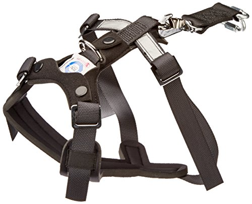 4. Original Allsafe Harness