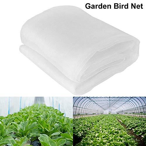 Ksruee -  Gartennetz
