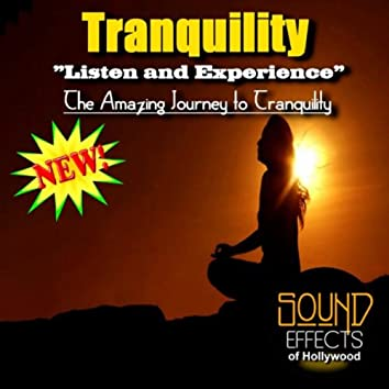 Tranquility - Listen And Experience The Amazing Journey To Tranquility