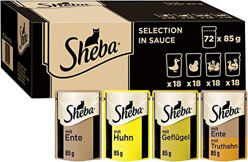 SHEBA -  Sheba PB MP