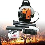 65CC Aspirateur à feuilles à essence avec souffleur 2,7 kW