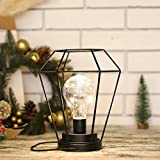 JHY DESIGN Diamond Metal Cage Table Lamp Battery Powered,Cordless Lamp with LED Edsion Style Bulb for Weddings,Parties,Patio,Events for Indoors/Outdoors and More (Hanging Hook Included)