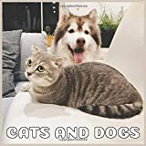 Cats and Dogs: 2021 Wall Calendar, Awesome monthly Calendar Gift for Cat & dog Lovers