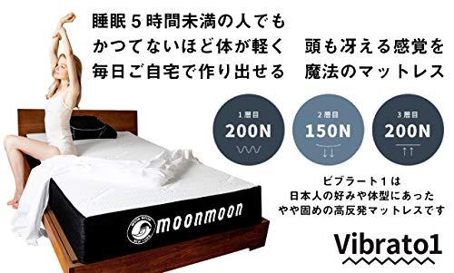 moonmoon(ムーンムーン)『Vibrato1』