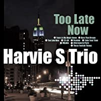 Too Late Now by Harvie Scwartz