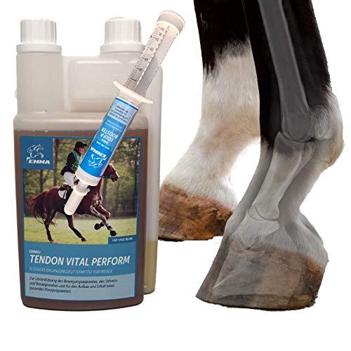 MSM Pferd + Equi P Booster I Organischer Schwefel I Gelenk-Fit Bänder Sehnen Knochen Knorpel I Glucosamin Chondroitin Kollagen hochdosiert I Bewegungsapparat I anstatt Pulver Pferde 30ml 1L