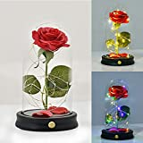 Glass Rose -Preserved Real Rose in Glass Dome Lamp 2 Light Modes - Beauty with Battery Powered...