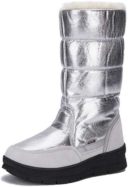 Women's Fashion Platform Waterproof Short Plush Lined Frosty Winter Warm Snow Boot
