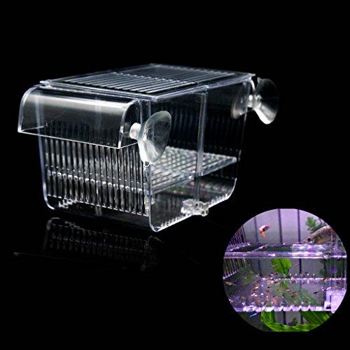 Boxtech Aquarium Container