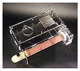 M3 Decorium Hormigas Nido Tubos de Cristal de bambú Antigua hábitat Hormiga Castillo de la Granja Hormigas Excava su Propia casa túneles fáciles de Instalar (Size : 25x200mm)