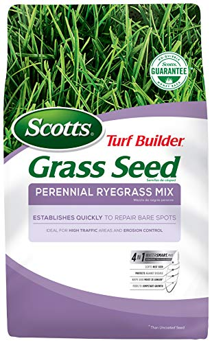 Scotts Turf Builder Grass Seed Perennial Ryegrass Mix, 7.lb. - Full Sun and Light Shade - Quickly...