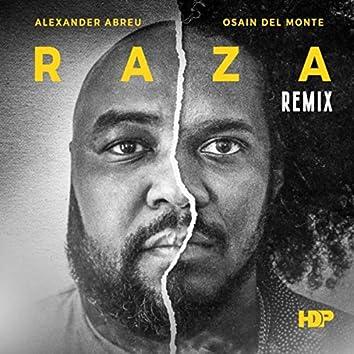 Raza (Remix) [feat. Osain Del Monte]