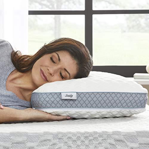 Sealy Molded Memory Foam Pillow, Standard, White, Grey