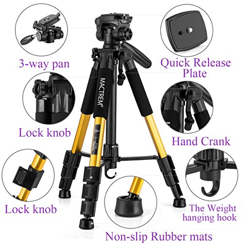 Mactrem PT55 Travel Camera Tripod Lightweight Aluminum for DSLR SLR Canon Nikon Sony Olympus DV with Carry Bag -11 lbs(5kg) Load (Gold)