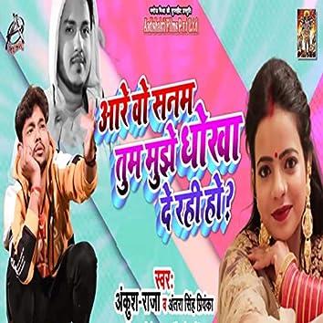 Are Wo Sanam Tum Mujhe Dhokha De Rahi Ho