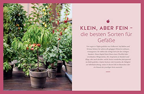 Mein City-Obstgarten: Fruchtiges Naschvergnügen für Balkon & Terrasse (GU Garten Extra) - 8