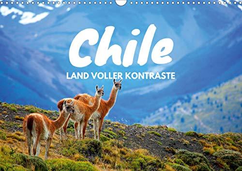 Chile - Land voller Kontraste (Wandkalender 2021 DIN A3 quer)