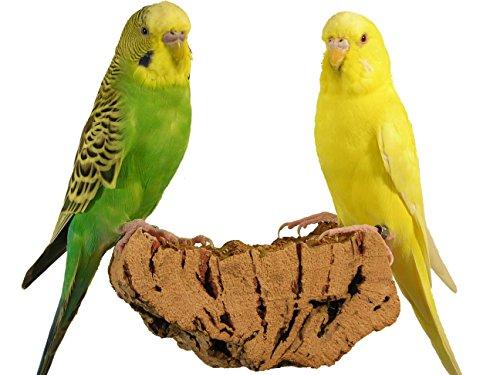 Korksitzbrett für Vögel - Größen M (10 x 6 cm)- 100% Bio Vogelkäfig Zubehör - gesundes Sitzbrett für Wellensittiche, Nymphensittiche, Papageien und co. (M)