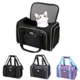 Best Cat Carriers - SERCOVE Carriers Airline Approved Pet Carrier Soft Sided Review