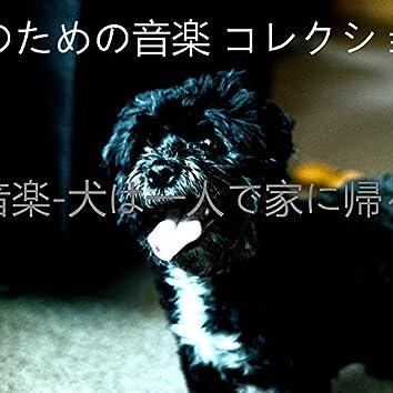 音楽-犬は一人で家に帰る