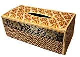 CCCollections Funda para Caja de pañuelos de Trenzado de caña Hecha con Materiales sostenibles y ecológicos y un Exquisito Ribete de Seda. (B Beige)