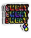 Peach Poem 80s Workout Outfit Sweat Retro Tie Dye Funny Gift Decorations - 4x3 Vinyl Stickers, Laptop Decal, Water Bottle Sticker (Set of 3)